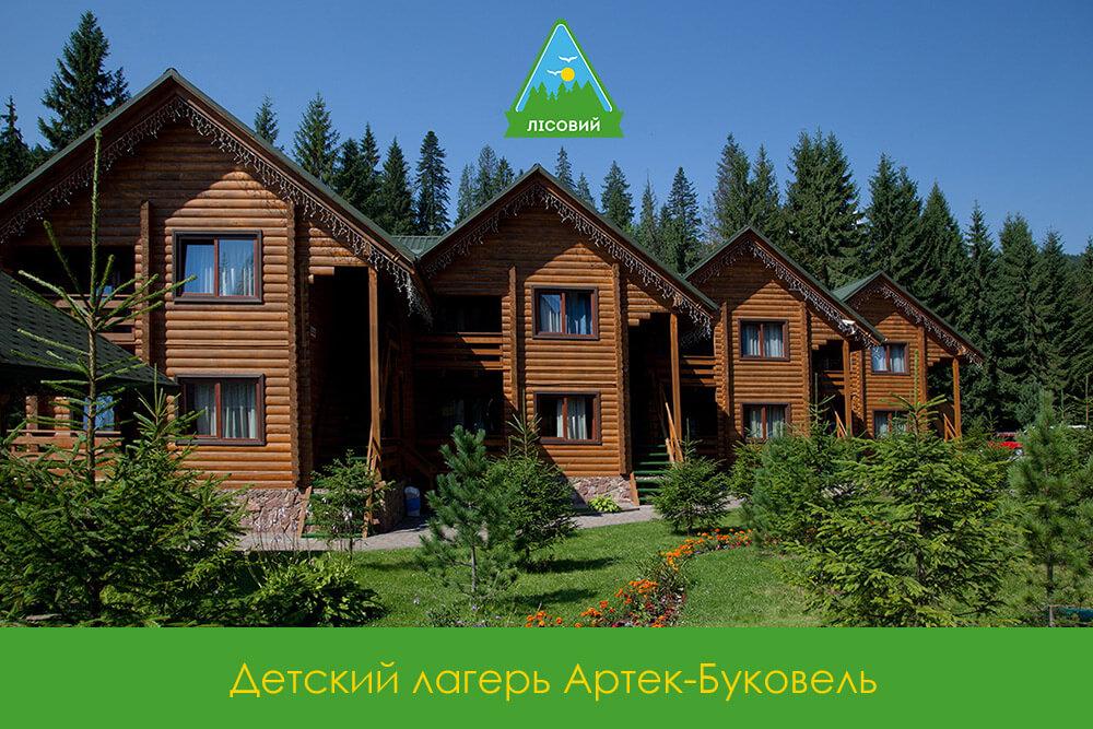 Детский лагерь Лесной-АРТЕК-Буковель